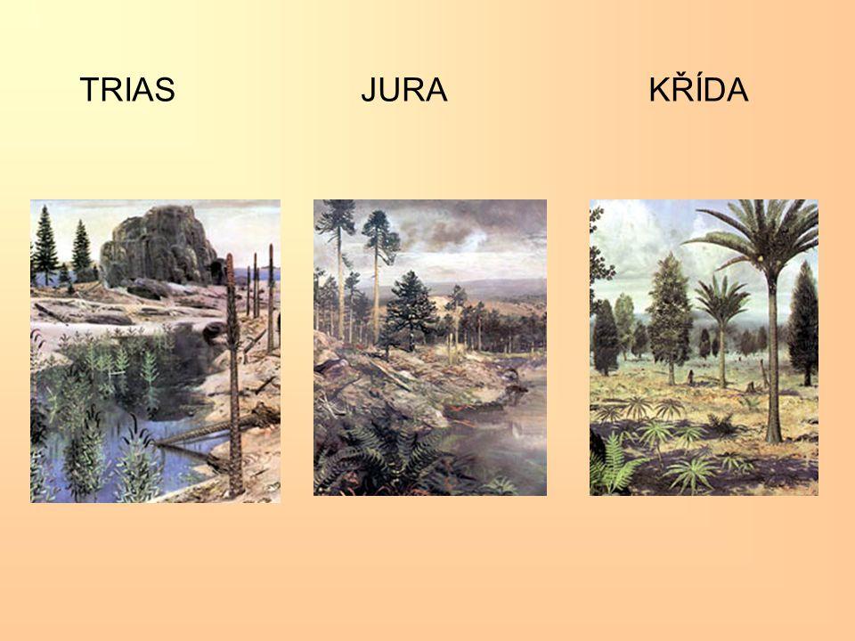 TRIAS JURA KŘÍDA
