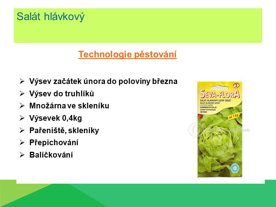Salát hlávkový Technologie pěstování
