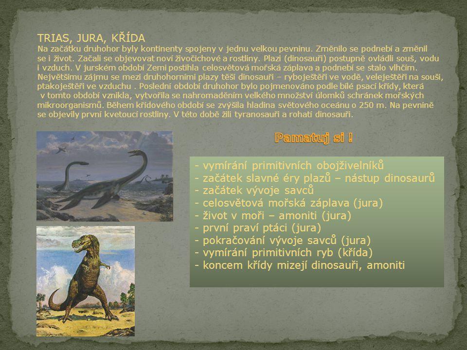 TRIAS, JURA, KŘÍDA Na začátku druhohor byly kontinenty spojeny v jednu velkou pevninu. Změnilo se podnebí a změnil se i život. Začali se objevovat noví živočichové a rostliny. Plazi (dinosauři) postupně ovládli souš, vodu i vzduch. V jurském období Zemi postihla celosvětová mořská záplava a podnebí se stalo vlhčím. Největšímu zájmu se mezi druhohorními plazy těší dinosauři – ryboještěři ve vodě, veleještěři na souši, ptakoještěři ve vzduchu . Poslední období druhohor bylo pojmenováno podle bílé psací křídy, která v tomto období vznikla, vytvořila se nahromaděním velkého množství úlomků schránek mořských mikroorganismů. Během křídového období se zvýšila hladina světového oceánu o 250 m. Na pevnině se objevily první kvetoucí rostliny. V této době žili tyranosauři a rohatí dinosauři.