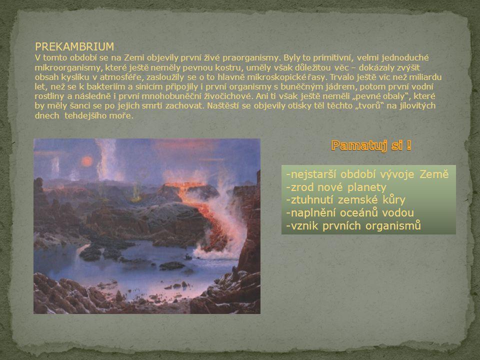 PREKAMBRIUM V tomto období se na Zemi objevily první živé praorganismy