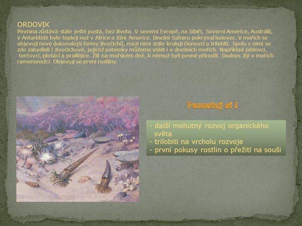 ORDOVIK Pevnina zůstává stále ještě pustá, bez života