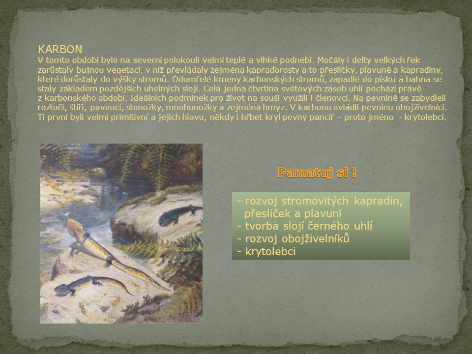 KARBON V tomto období bylo na severní polokouli velmi teplé a vlhké podnebí. Močály i delty velkých řek zarůstaly bujnou vegetací, v níž převládaly zejména kapraďorosty a to přesličky, plavuně a kapradiny, které dorůstaly do výšky stromů. Odumřelé kmeny karbonských stromů, zapadlé do písku a bahna se staly základem pozdějších uhelných slojí. Celá jedna čtvrtina světových zásob uhlí pochází právě z karbonského období. Ideálních podmínek pro život na souši využili i členovci. Na pevnině se zabydleli roztoči, štíři, pavouci, stonožky, mnohonožky a zejména hmyz. V karbonu ovládli pevninu obojživelníci. Ti první byli velmi primitivní a jejich hlavu, někdy i hřbet kryl pevný pancíř – proto jméno - krytolebci.