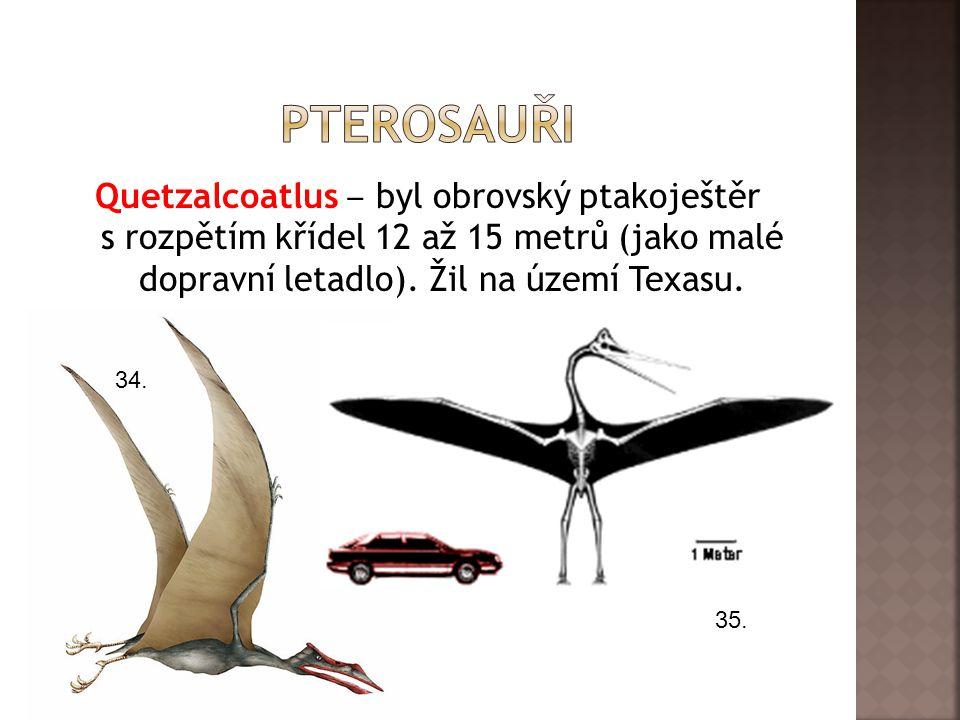 pterosauři Quetzalcoatlus ‒ byl obrovský ptakoještěr s rozpětím křídel 12 až 15 metrů (jako malé dopravní letadlo). Žil na území Texasu.