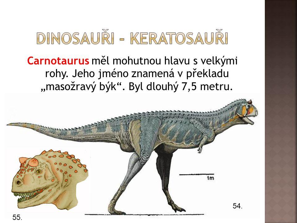 Dinosauři - keratosauři