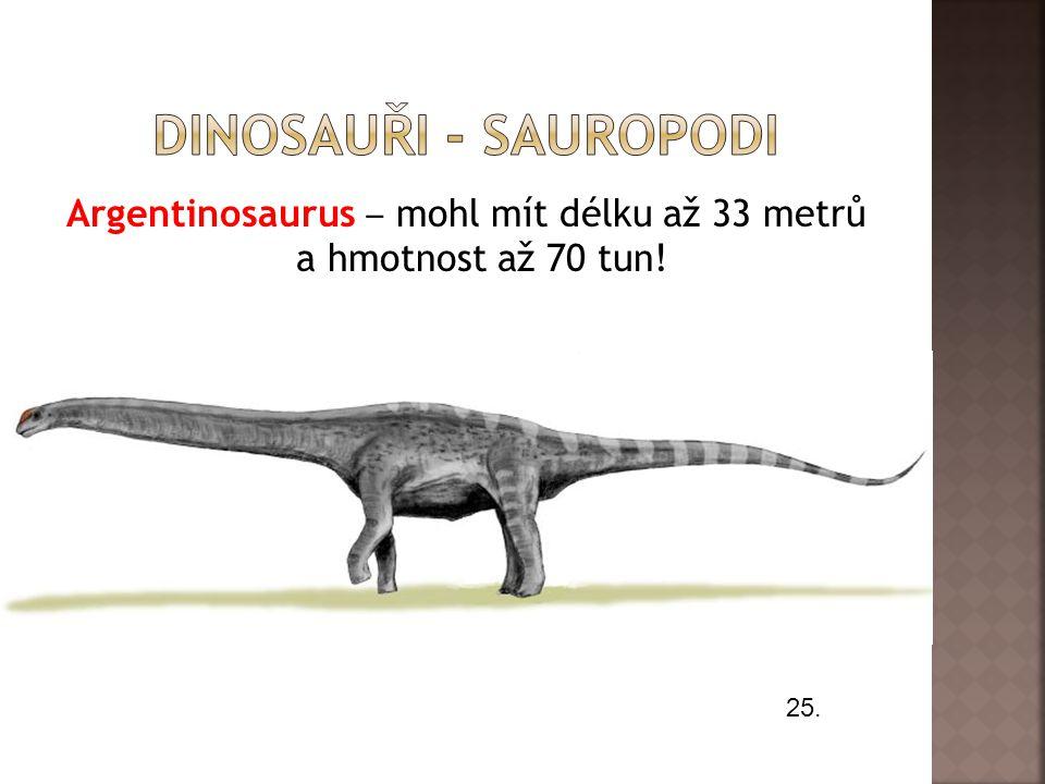 Argentinosaurus ‒ mohl mít délku až 33 metrů a hmotnost až 70 tun!