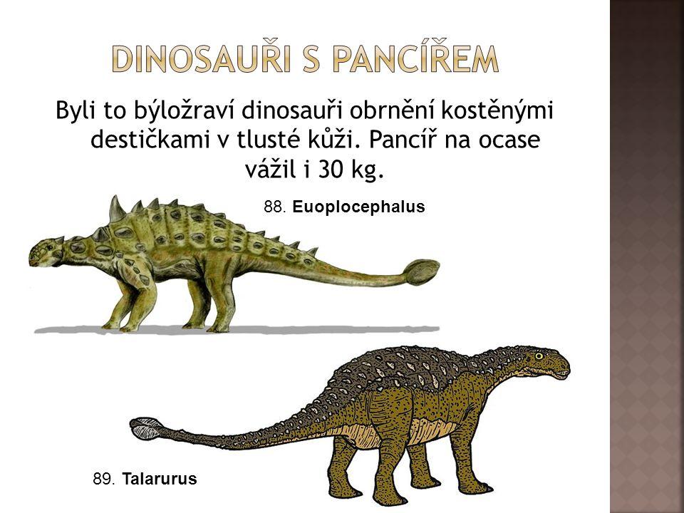 Dinosauři s pancířem Byli to býložraví dinosauři obrnění kostěnými destičkami v tlusté kůži. Pancíř na ocase vážil i 30 kg.