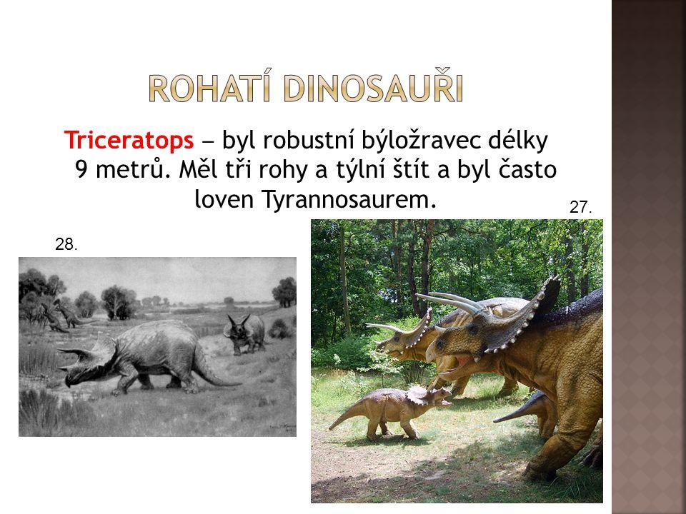 Rohatí dinosauři Triceratops ‒ byl robustní býložravec délky 9 metrů. Měl tři rohy a týlní štít a byl často loven Tyrannosaurem.
