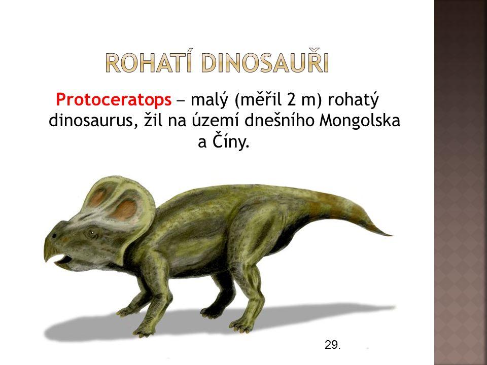 Rohatí dinosauři Protoceratops ‒ malý (měřil 2 m) rohatý dinosaurus, žil na území dnešního Mongolska a Číny.