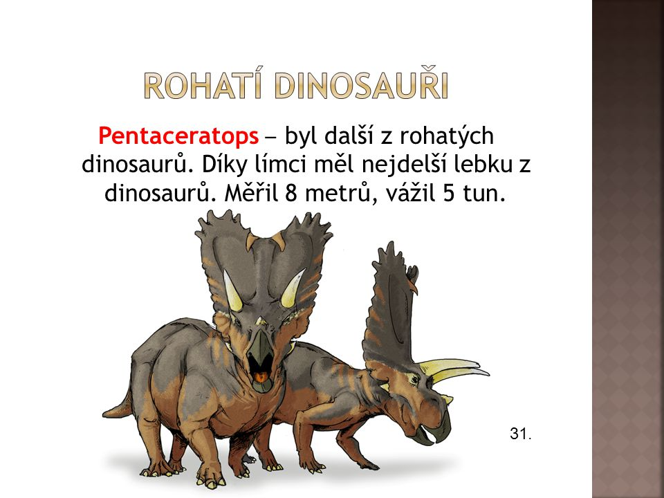 Rohatí dinosauři Pentaceratops ‒ byl další z rohatých dinosaurů. Díky límci měl nejdelší lebku z dinosaurů. Měřil 8 metrů, vážil 5 tun.