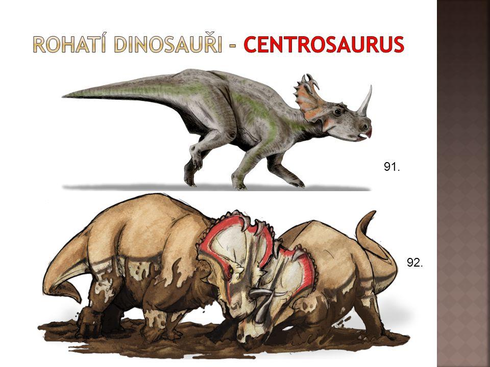 Rohatí dinosauři - centrosaurus