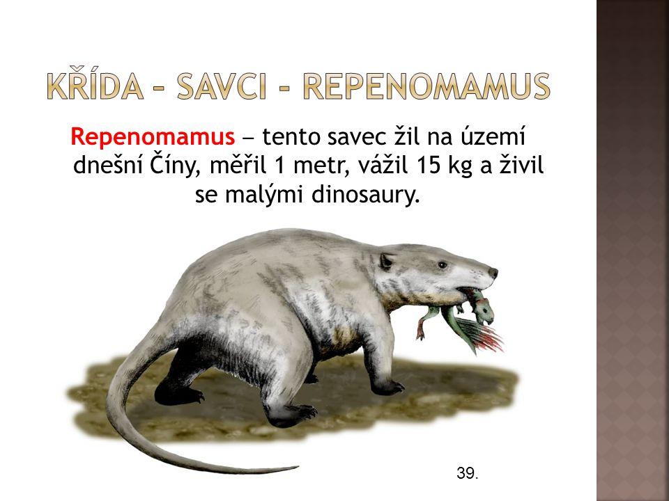 Křída – savci - Repenomamus