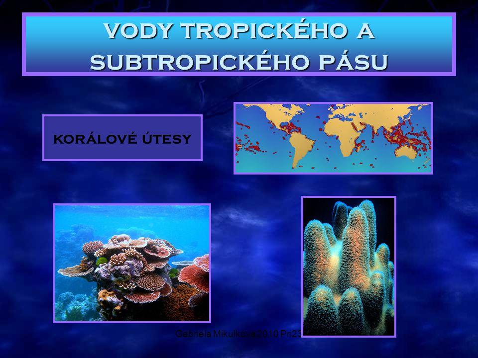 vody tropického a subtropického pásu