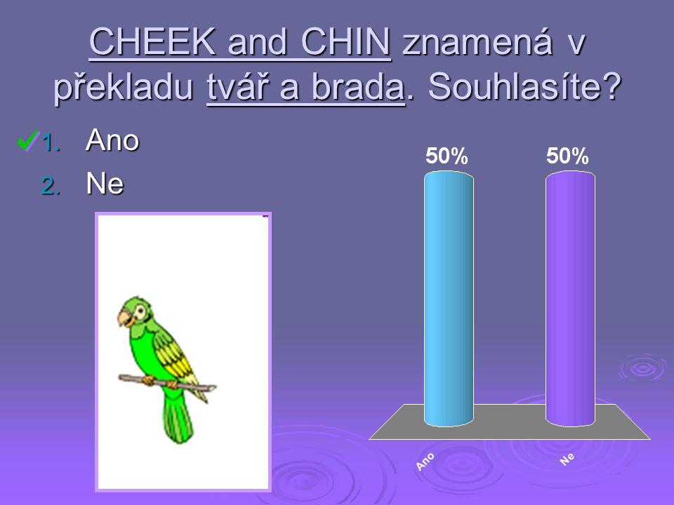 CHEEK and CHIN znamená v překladu tvář a brada. Souhlasíte