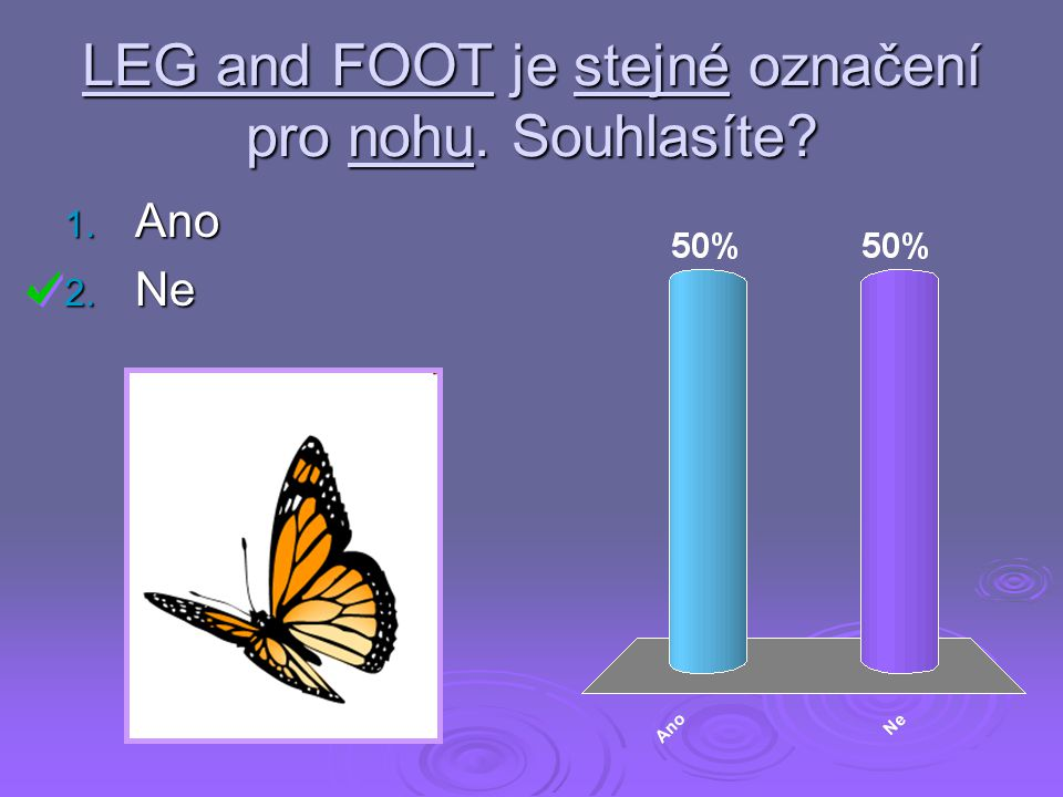 LEG and FOOT je stejné označení pro nohu. Souhlasíte