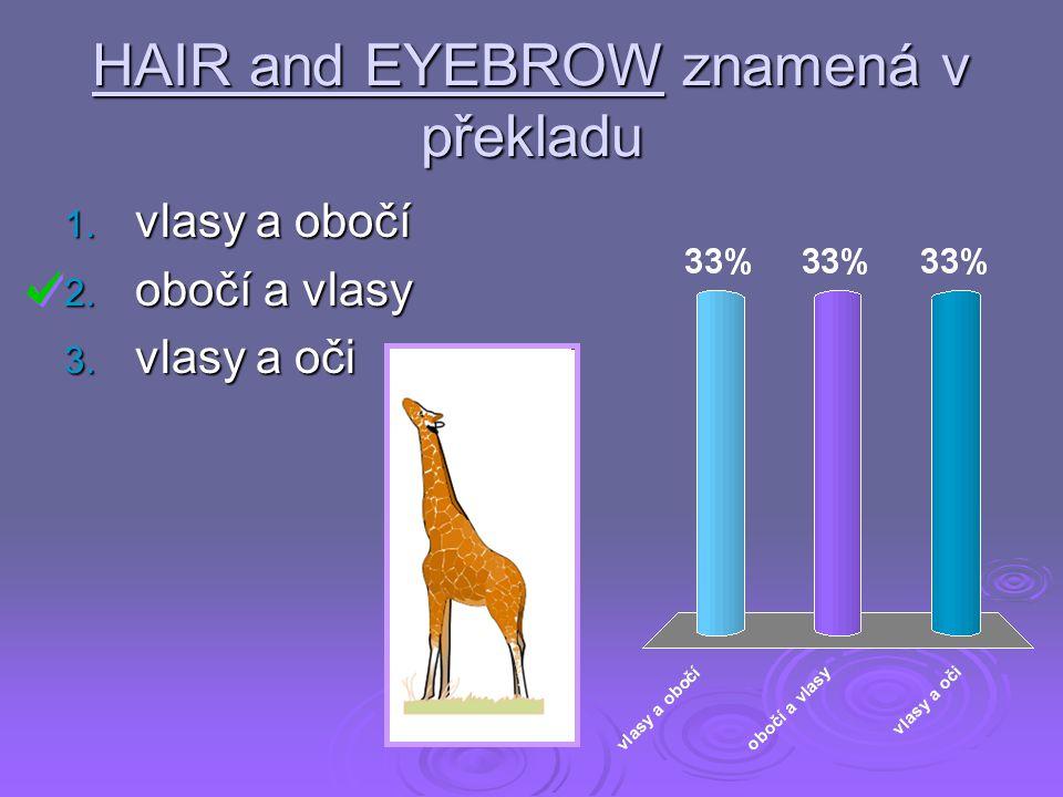 HAIR and EYEBROW znamená v překladu