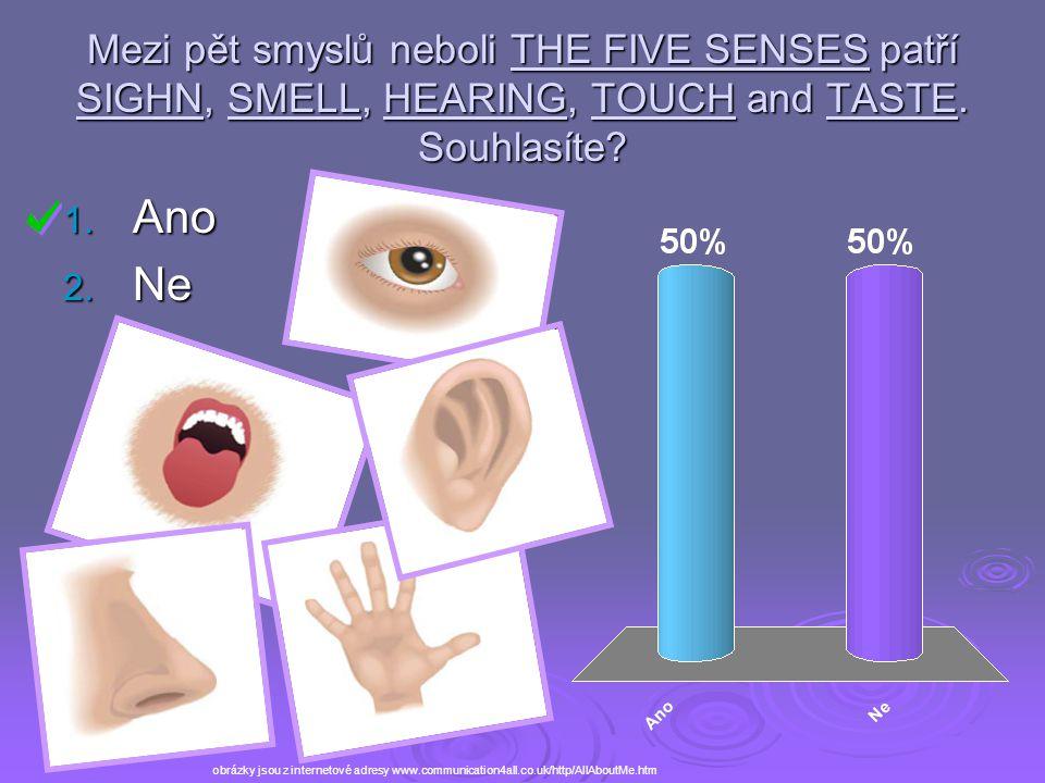 Mezi pět smyslů neboli THE FIVE SENSES patří SIGHN, SMELL, HEARING, TOUCH and TASTE. Souhlasíte