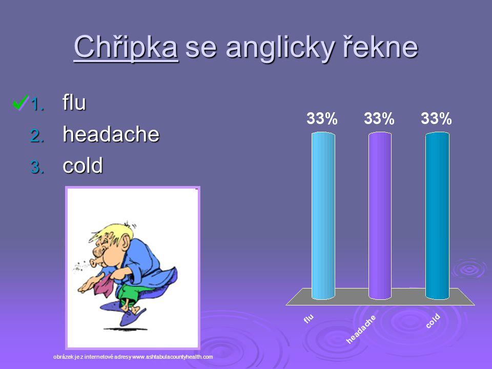 Chřipka se anglicky řekne