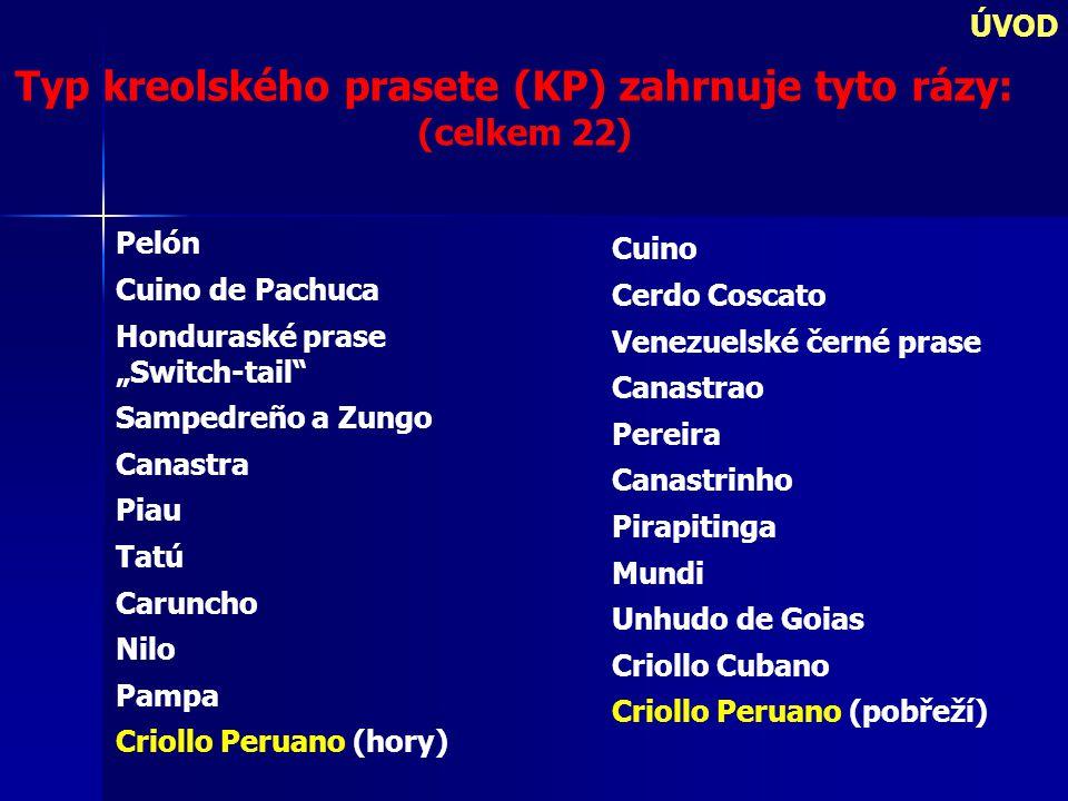 Typ kreolského prasete (KP) zahrnuje tyto rázy: