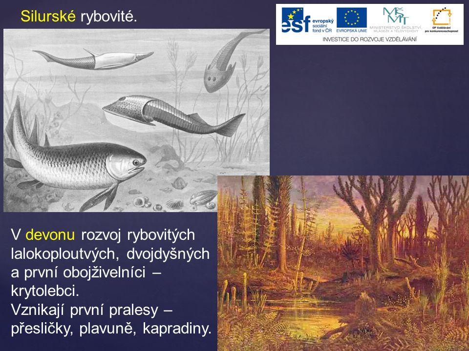 Silurské rybovité. V devonu rozvoj rybovitých lalokoploutvých, dvojdyšných a první obojživelníci – krytolebci.