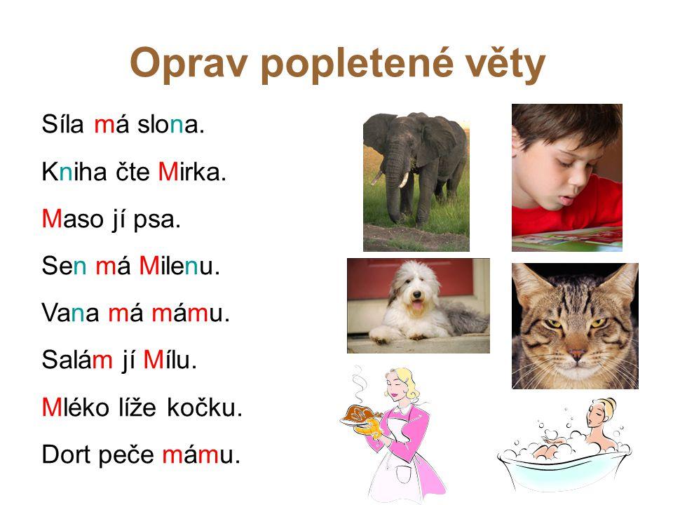 Oprav popletené věty Síla má slona. Kniha čte Mirka. Maso jí psa.