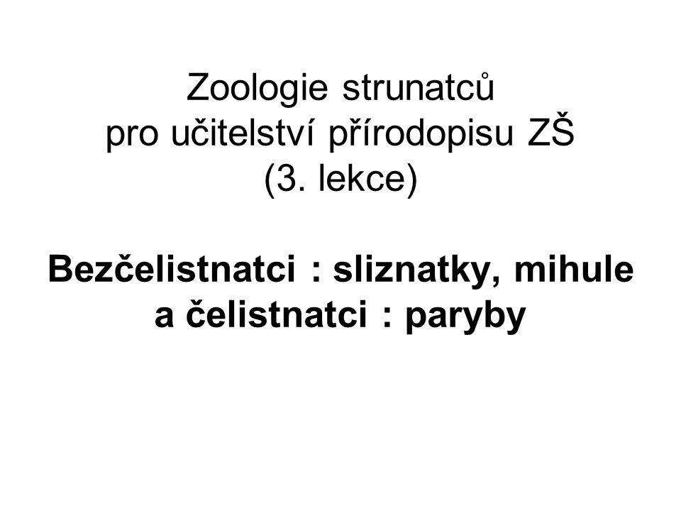Zoologie strunatců pro učitelství přírodopisu ZŠ (3