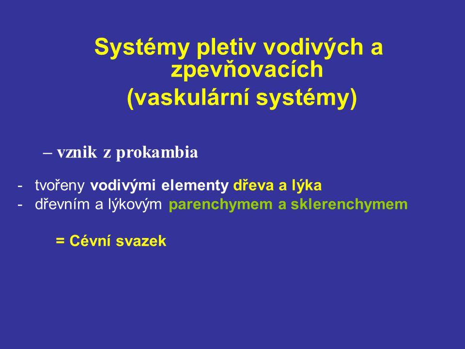 Systémy pletiv vodivých a zpevňovacích