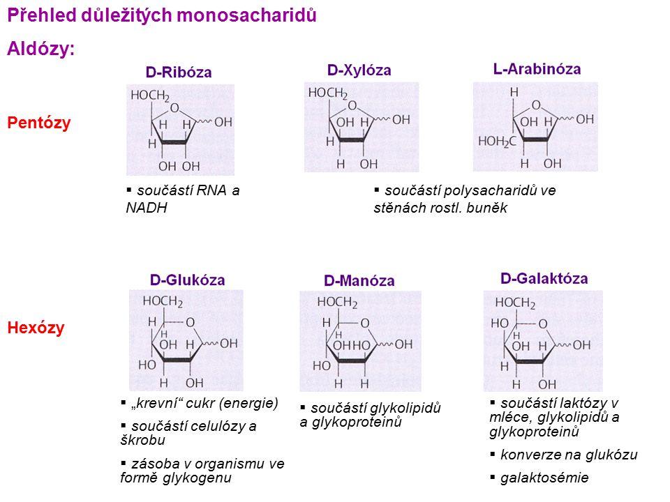 Přehled důležitých monosacharidů Aldózy: