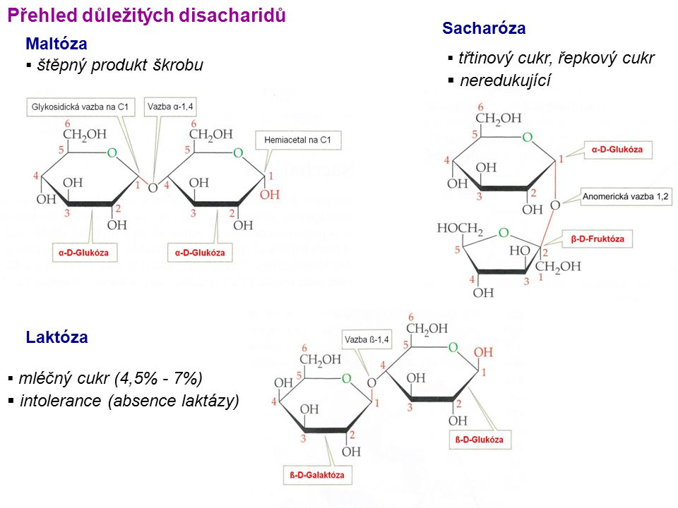 Přehled důležitých disacharidů