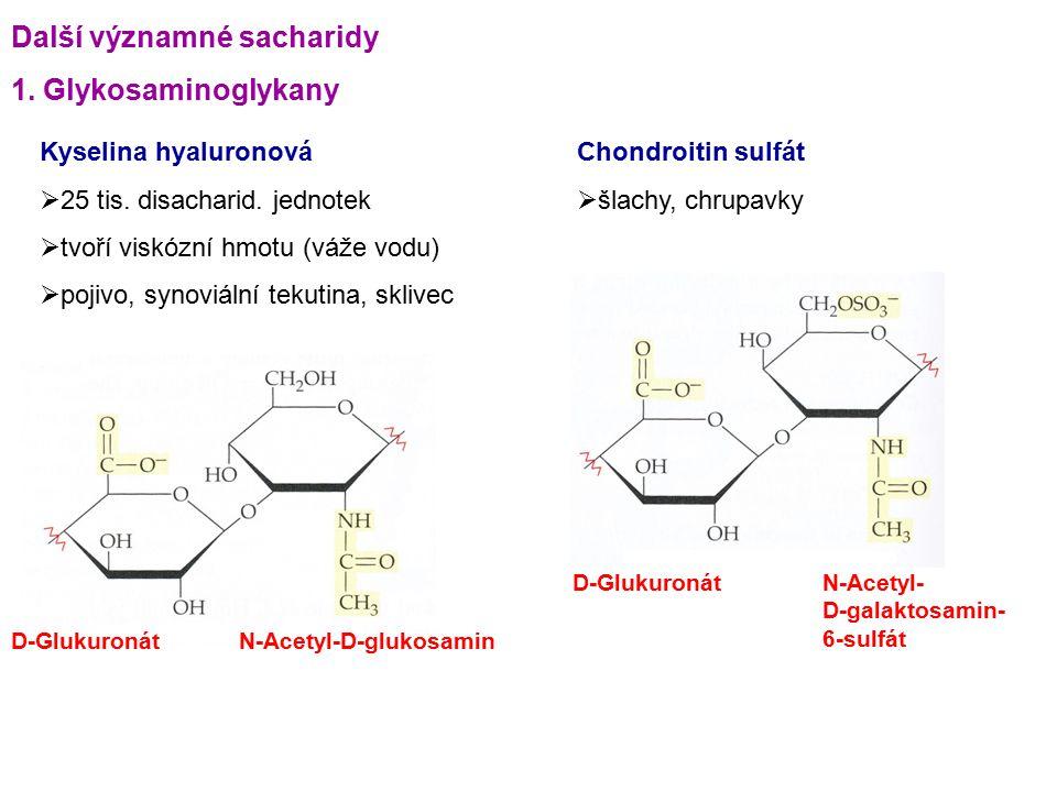 Další významné sacharidy 1. Glykosaminoglykany