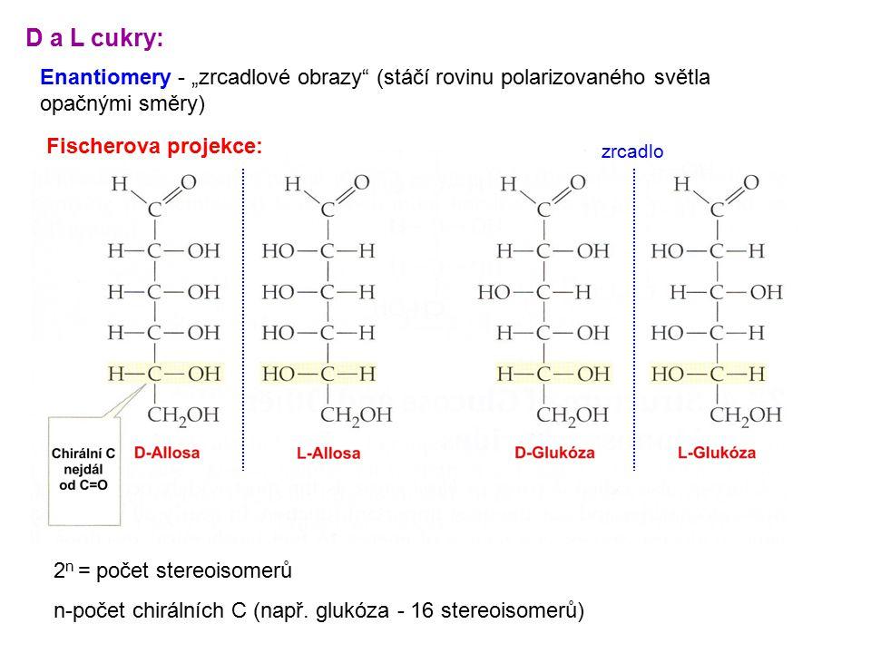 """D a L cukry: Enantiomery - """"zrcadlové obrazy (stáčí rovinu polarizovaného světla opačnými směry) Fischerova projekce:"""