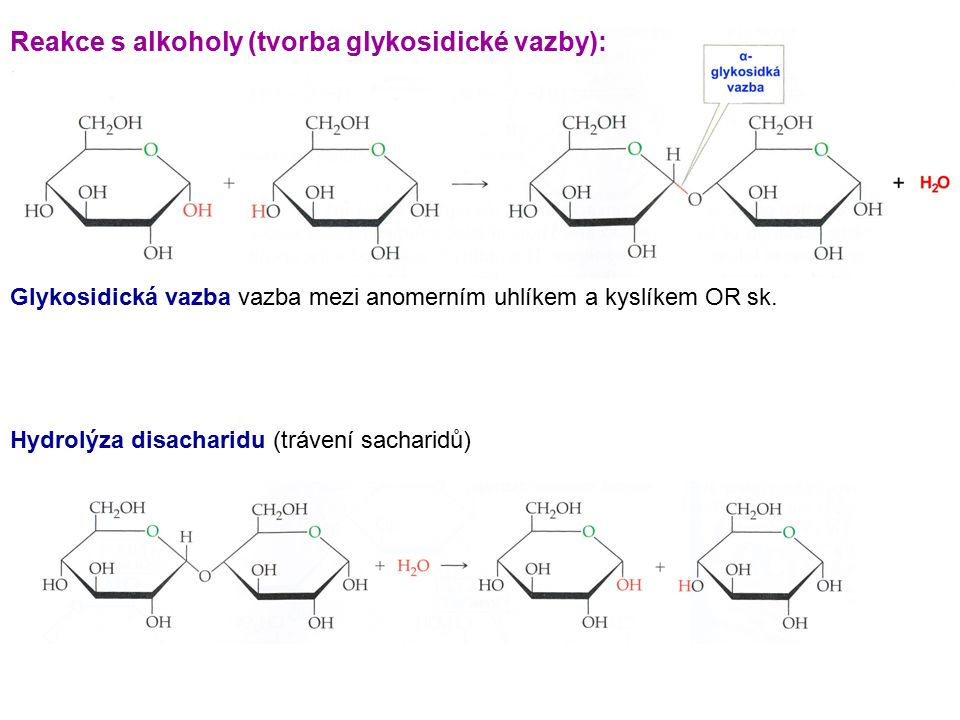 Reakce s alkoholy (tvorba glykosidické vazby):
