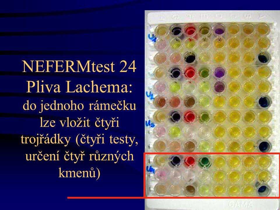 NEFERMtest 24 Pliva Lachema: do jednoho rámečku lze vložit čtyři trojřádky (čtyři testy, určení čtyř různých kmenů)