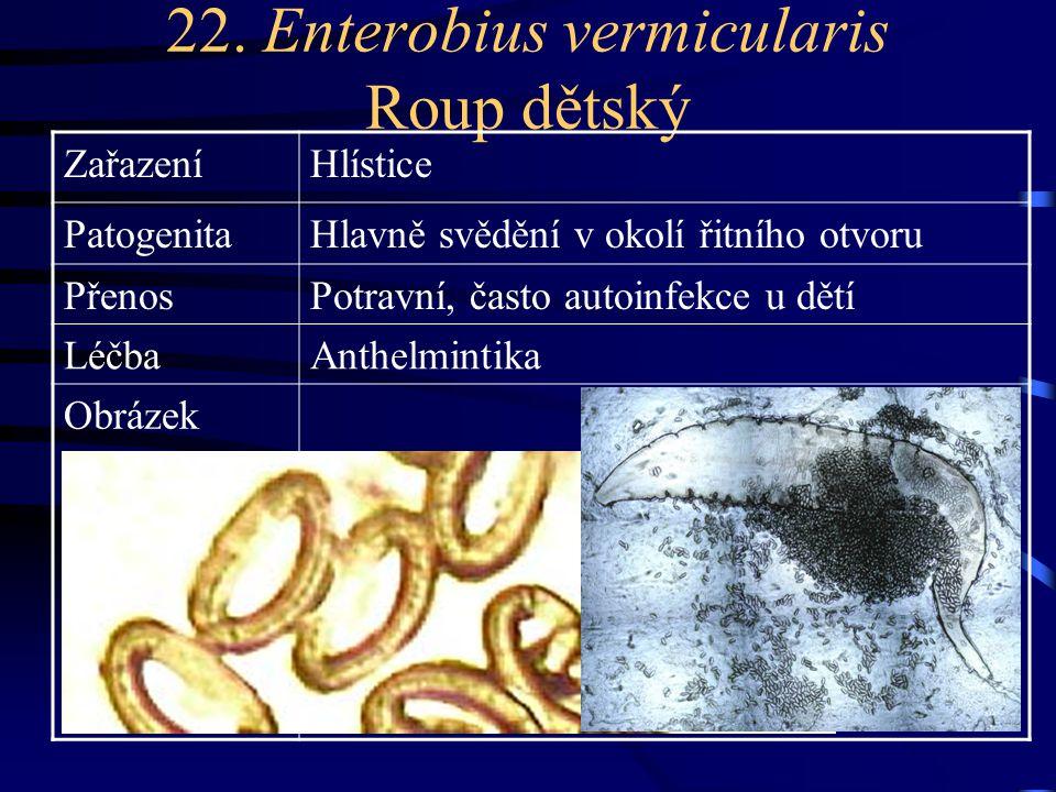 22. Enterobius vermicularis Roup dětský