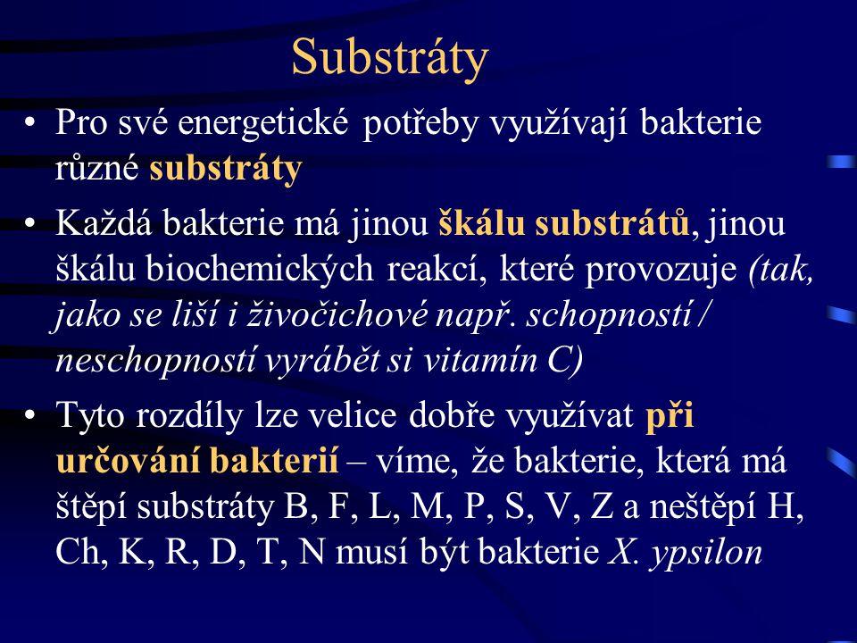Substráty Pro své energetické potřeby využívají bakterie různé substráty.