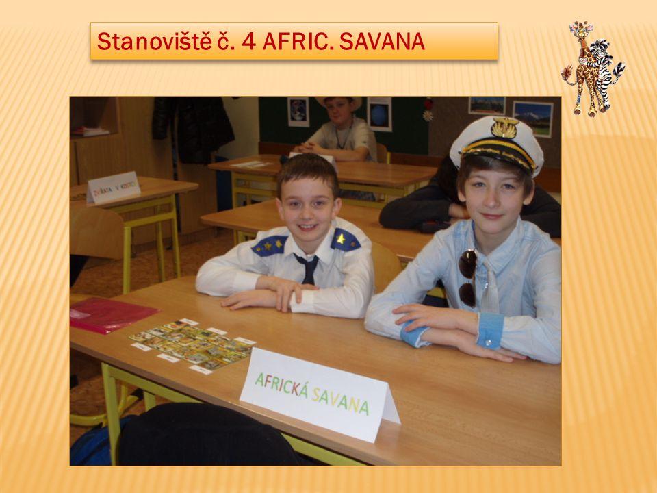 Stanoviště č. 4 AFRIC. SAVANA