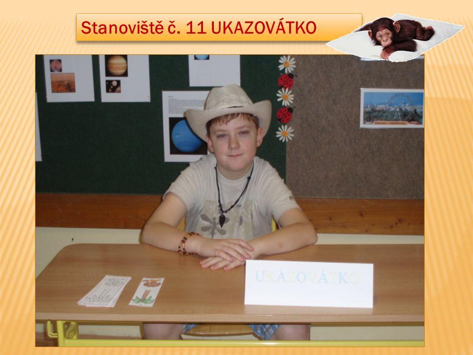 Stanoviště č. 11 UKAZOVÁTKO
