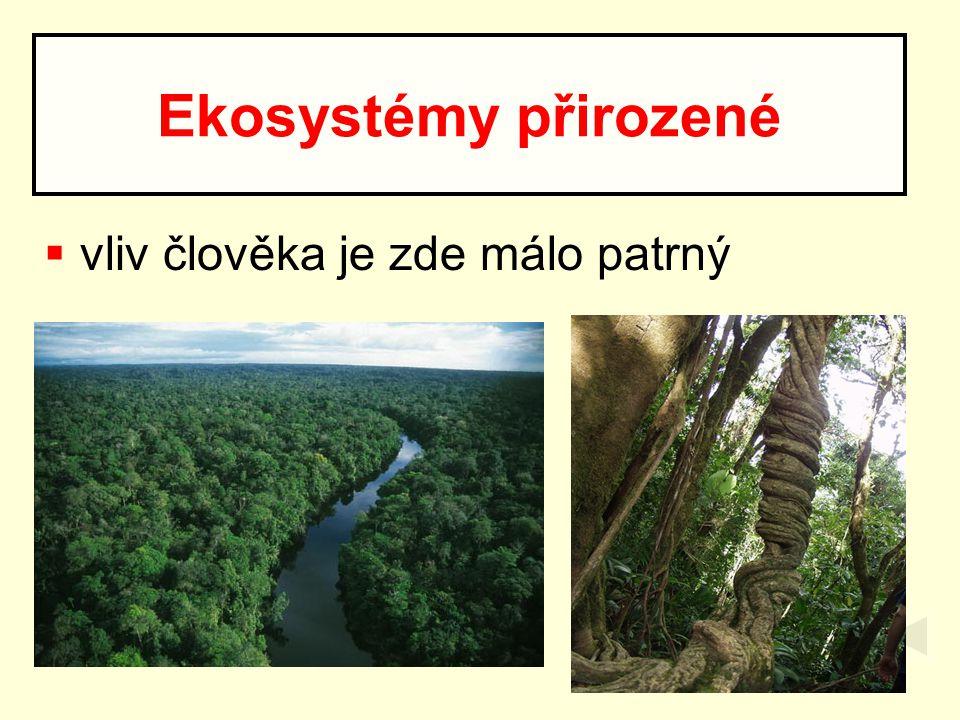 Ekosystémy přirozené vliv člověka je zde málo patrný