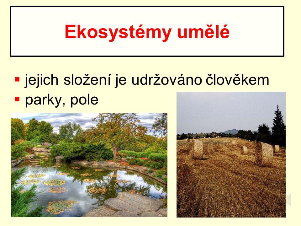 Ekosystémy umělé jejich složení je udržováno člověkem parky, pole