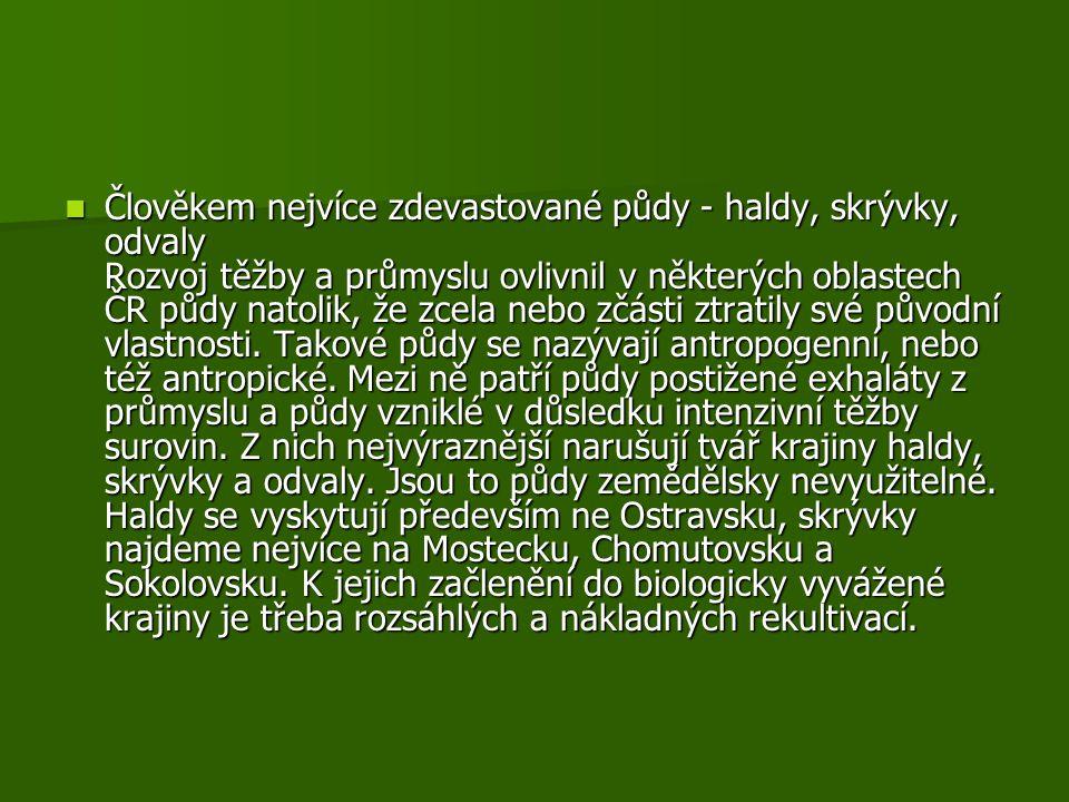 Člověkem nejvíce zdevastované půdy - haldy, skrývky, odvaly Rozvoj těžby a průmyslu ovlivnil v některých oblastech ČR půdy natolik, že zcela nebo zčásti ztratily své původní vlastnosti.