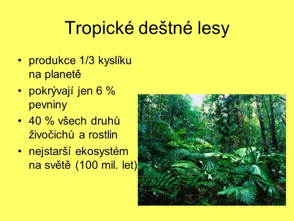 Tropické deštné lesy produkce 1/3 kyslíku na planetě