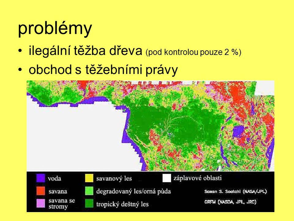 problémy ilegální těžba dřeva (pod kontrolou pouze 2 %)