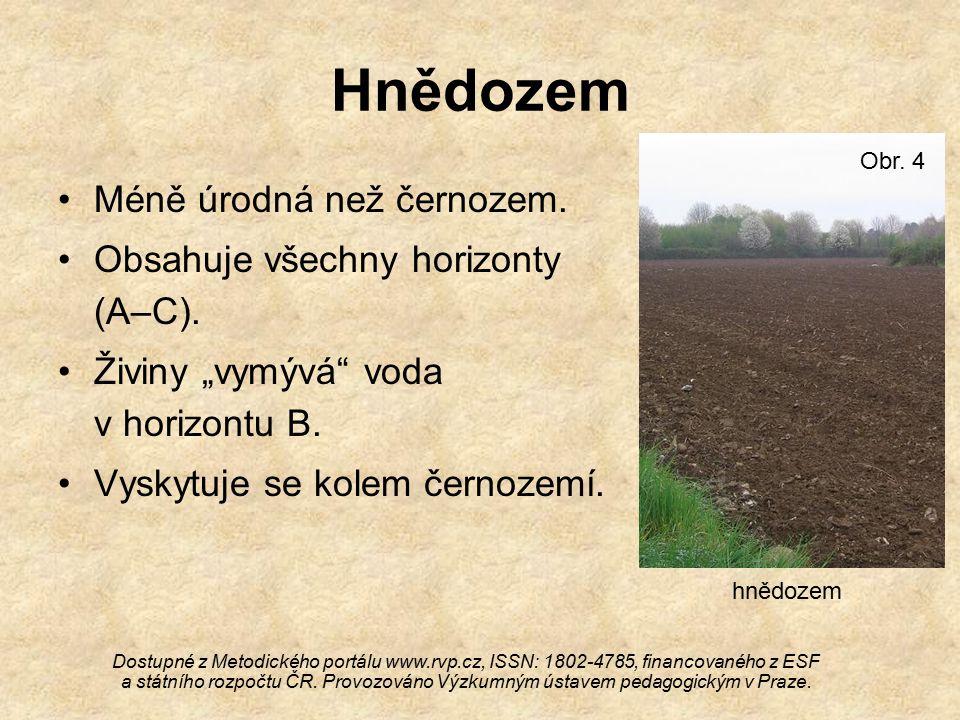 Hnědozem Méně úrodná než černozem. Obsahuje všechny horizonty (A–C).