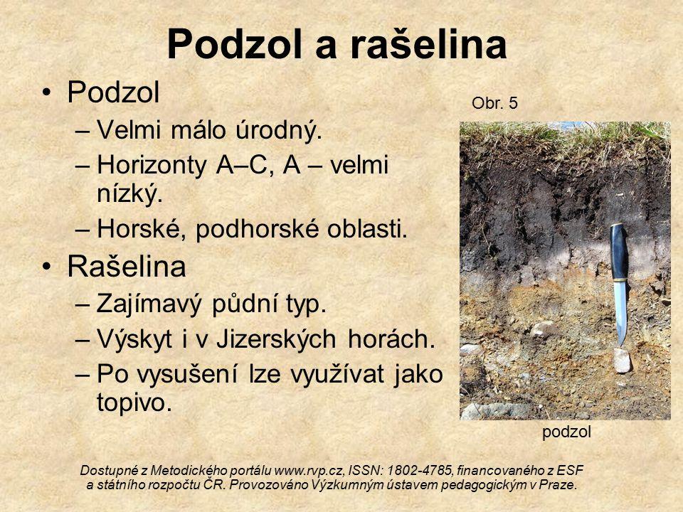 Podzol a rašelina Podzol Rašelina Velmi málo úrodný.