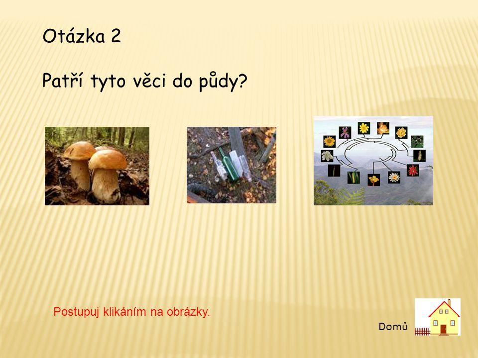 Otázka 2 Patří tyto věci do půdy Postupuj klikáním na obrázky. Domů