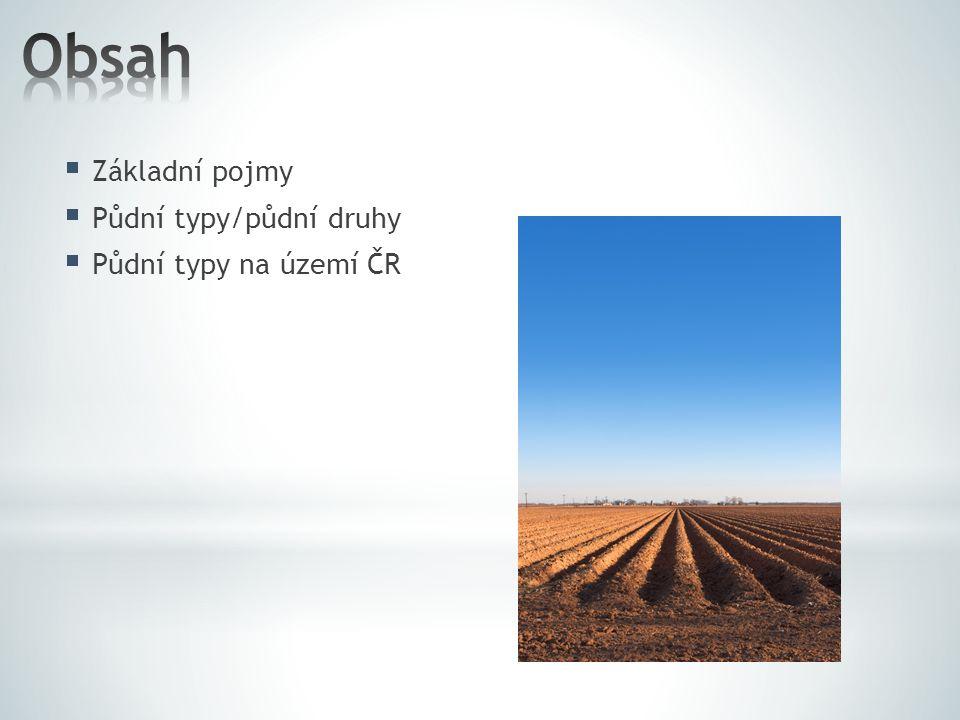 Obsah Základní pojmy Půdní typy/půdní druhy Půdní typy na území ČR