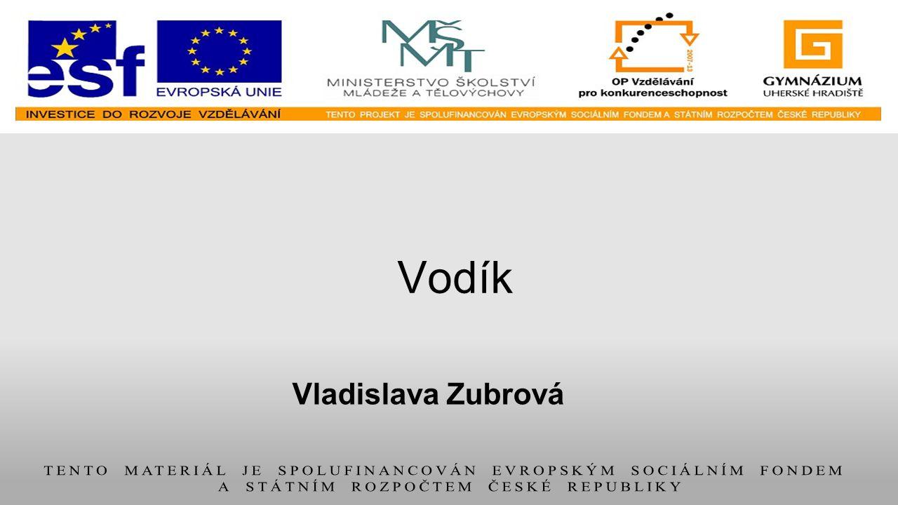 Vodík Vladislava Zubrová