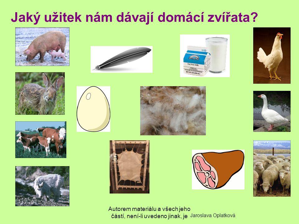 Jaký užitek nám dávají domácí zvířata
