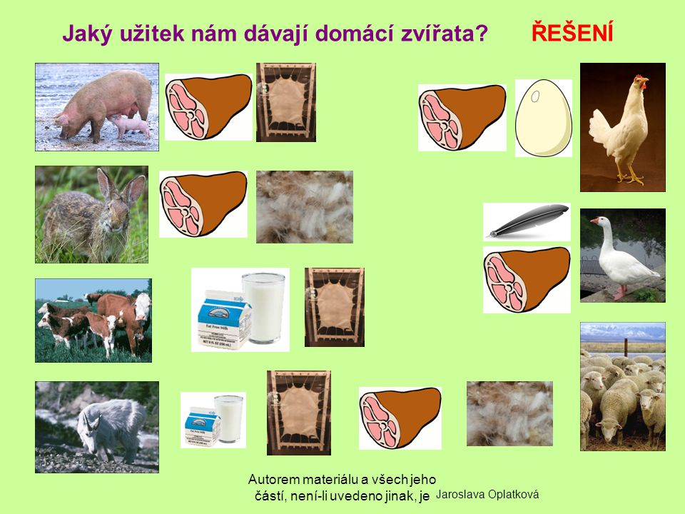 Jaký užitek nám dávají domácí zvířata ŘEŠENÍ