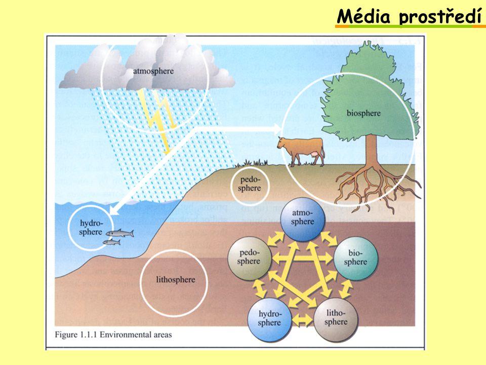 Média prostředí