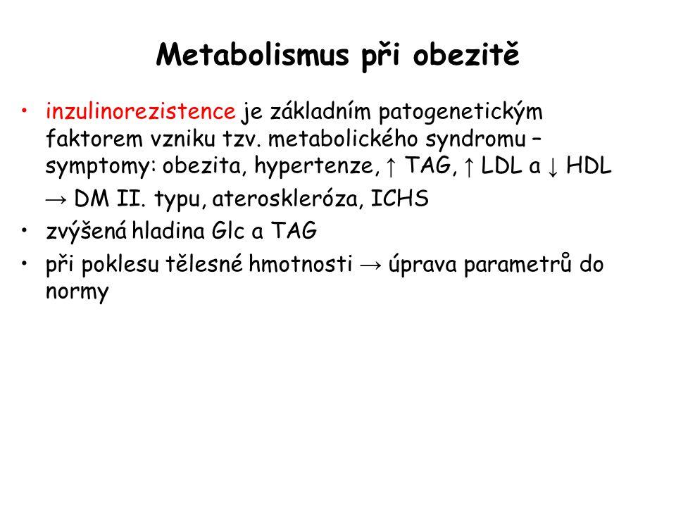 Metabolismus při obezitě